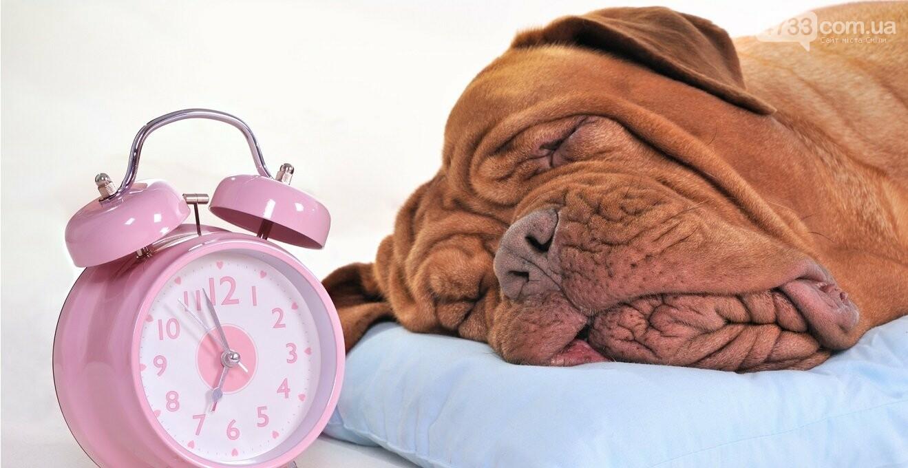 Цієї неділі не забудьте перевести годинники !, фото-1