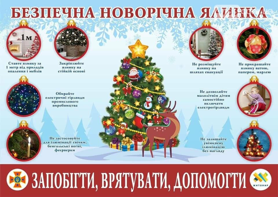 Будьте обережні! ДСНС нагадує правила пожежної безпеки під час новорічних свят (ВІДЕО), фото-1, ДСНС