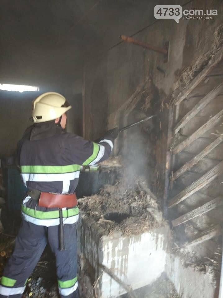 У Березняках через несправну піч загорівся будинок (ВІДЕО), фото-1, ДСНС